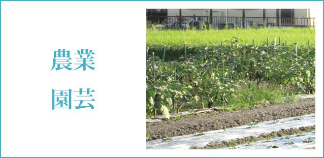 ココサポ福山 就労継続支援B型 仕事 農業園芸